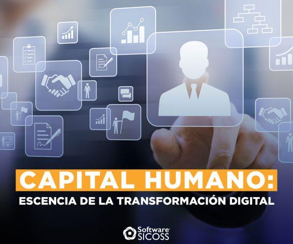 La importancia del capital humano en la transformación digital